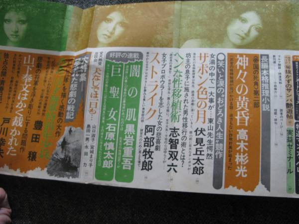 1971 10小説宝石 渡辺淳一 清岡すみこ 純子 清水一行 黒岩重吾(小説 ...