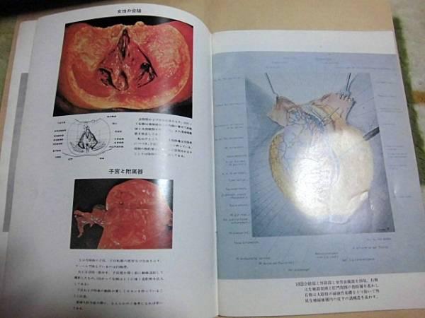 書 女性 写真 医学