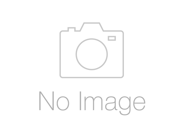 【五】東山魁夷 『星の夜』 リトグラフ 111/175 直筆サイン有 額装
