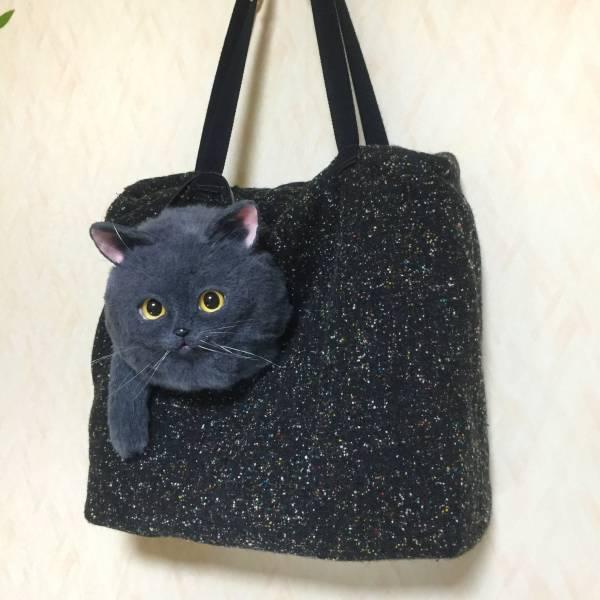 pico 猫 ショルダー バッグ ハンドメイド リアル ネコ(女性用 ...