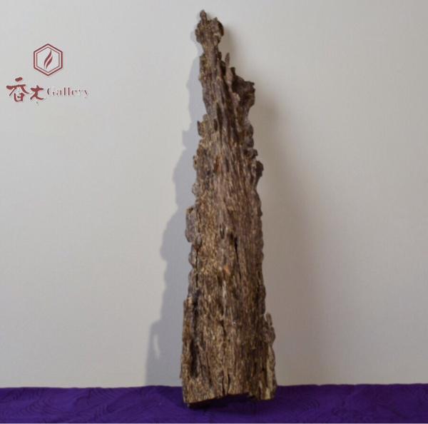 ベトナム産 沈香 姿木 250.9g ★ 香木・伽羅・agarwood